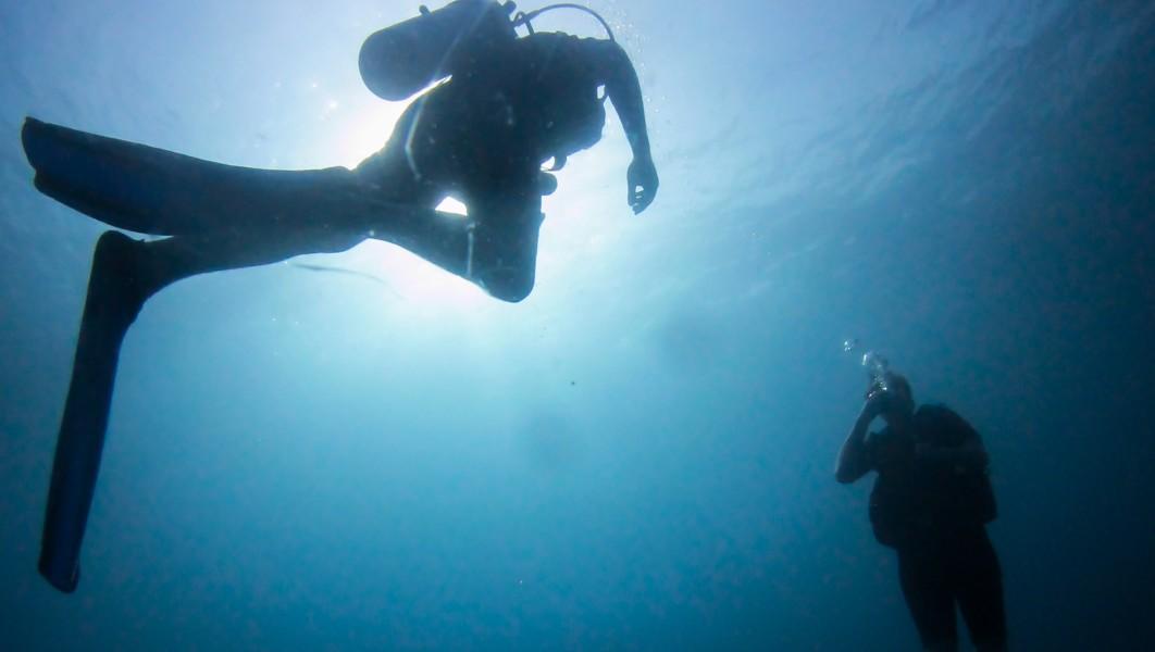 Contre-jour D'un Plongeur Dans Les Perhentians