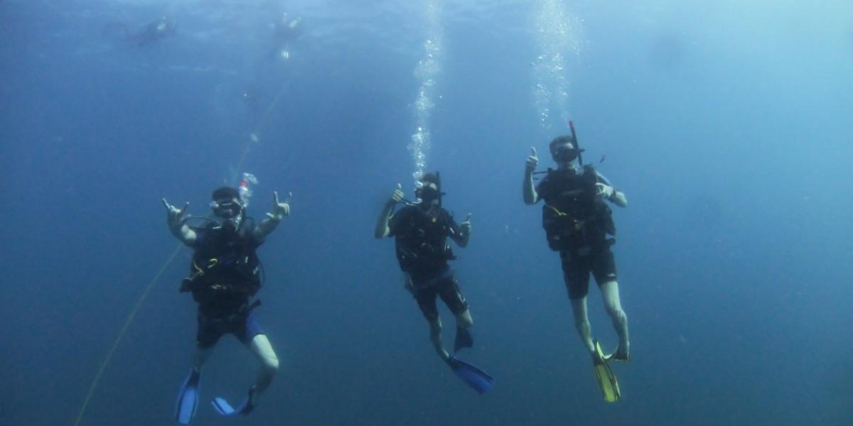 Les Meilleurs Plongeurs Au Monde