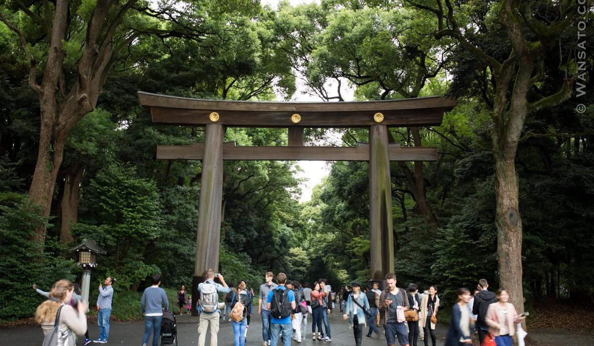 Japon - Le Torii à L'entrée Du Sanctuaire Meiji-Jingū à Tokyo