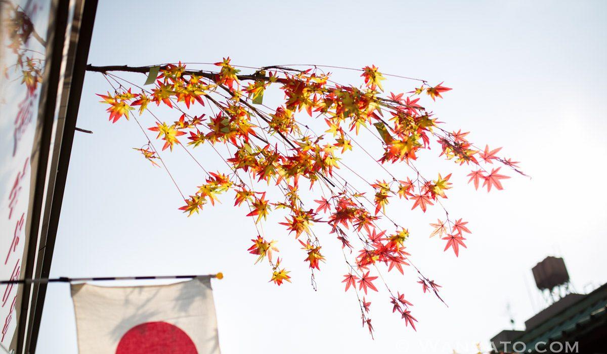 Japon - La Rue Nakamise-Dori à Tokyo