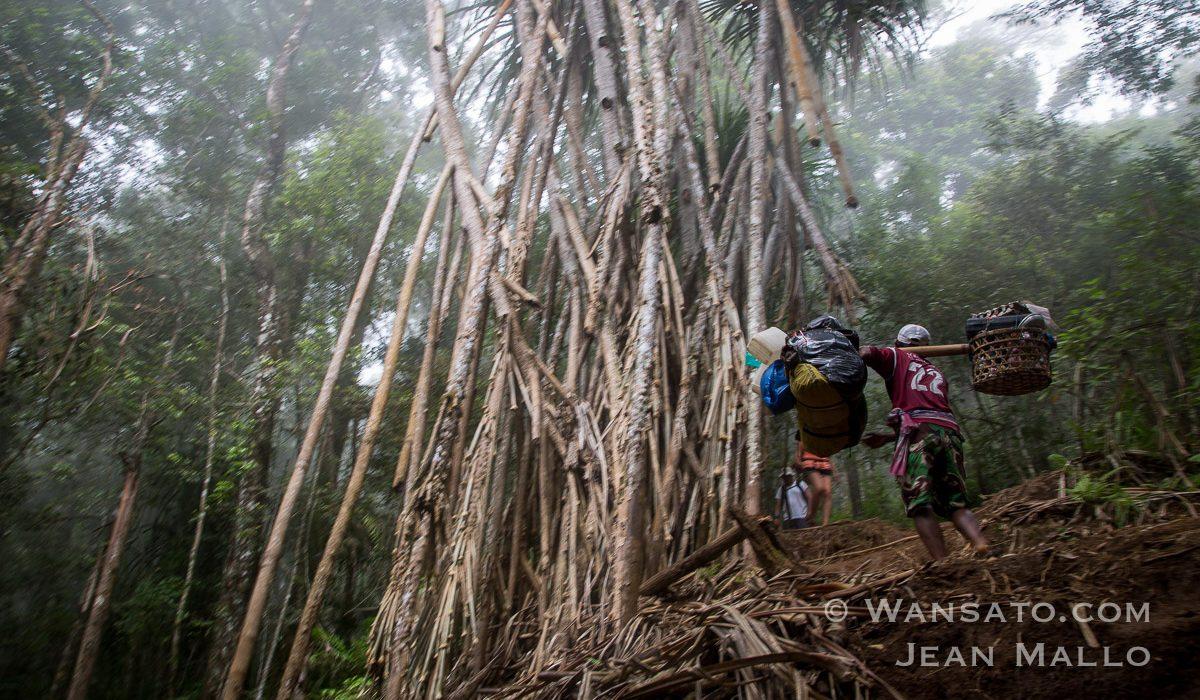 Portfolio Randonnée à Lombok