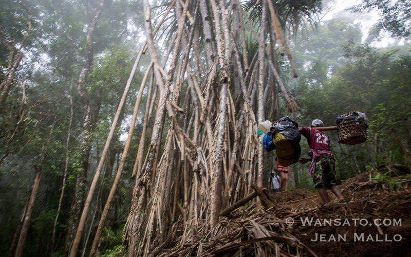 Portfolio - Randonnée à Lombok