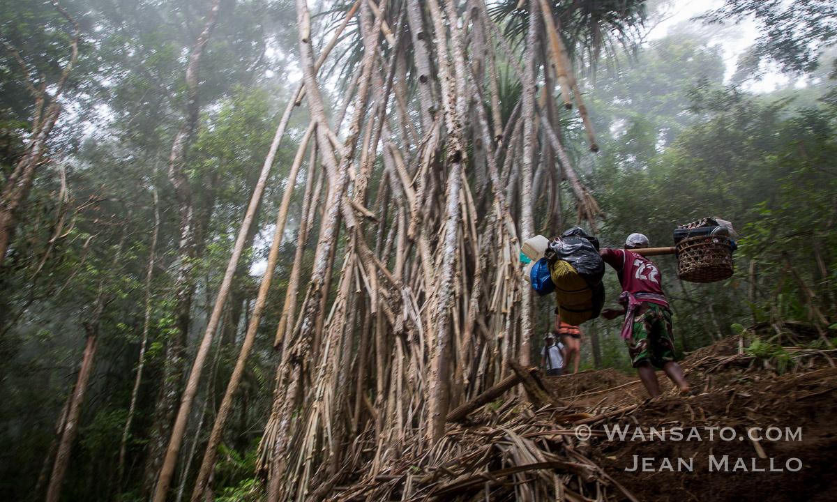 Randonnée à Lombok