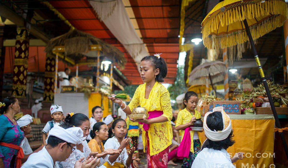 Portfolio Bali
