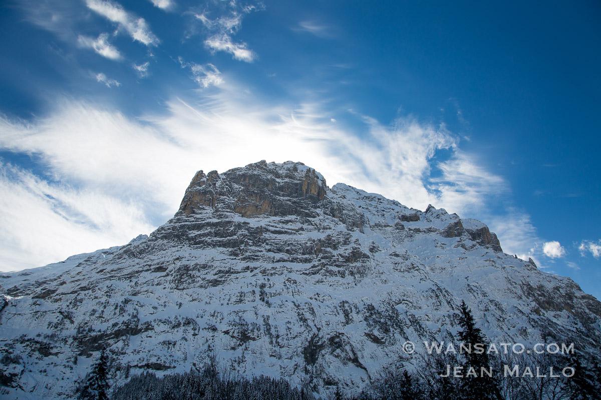 Suisse - Au Pied Des Montages à Grindelwald