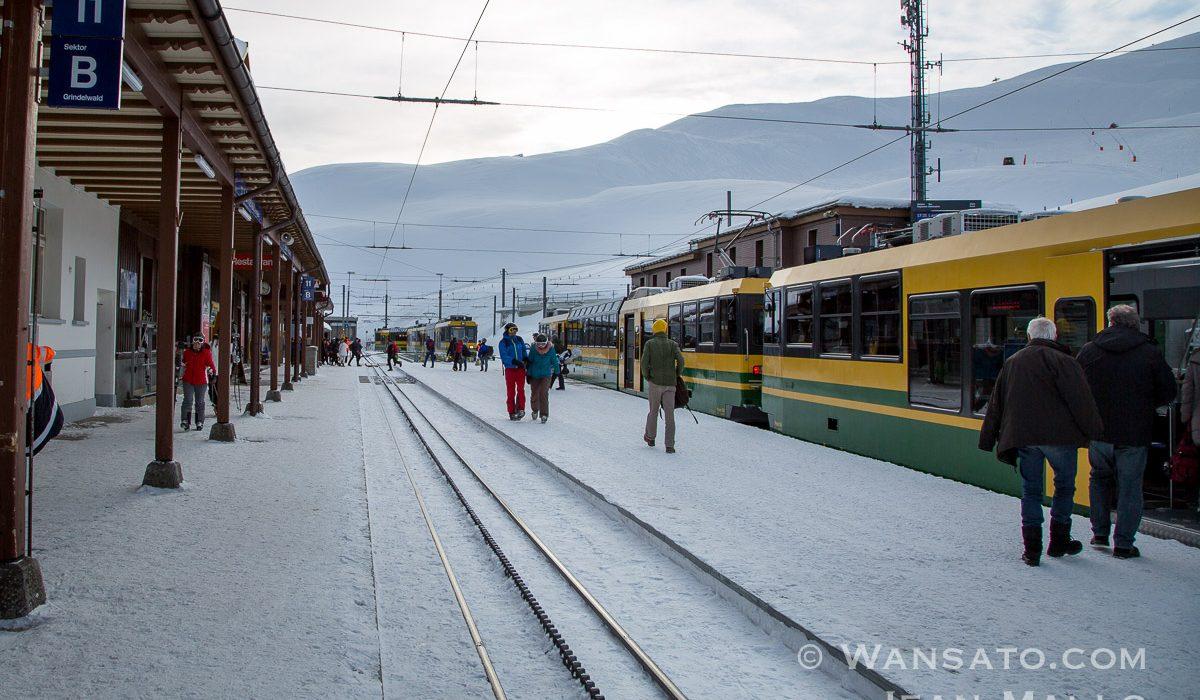 Suisse - La Station Kleine Scheidegg