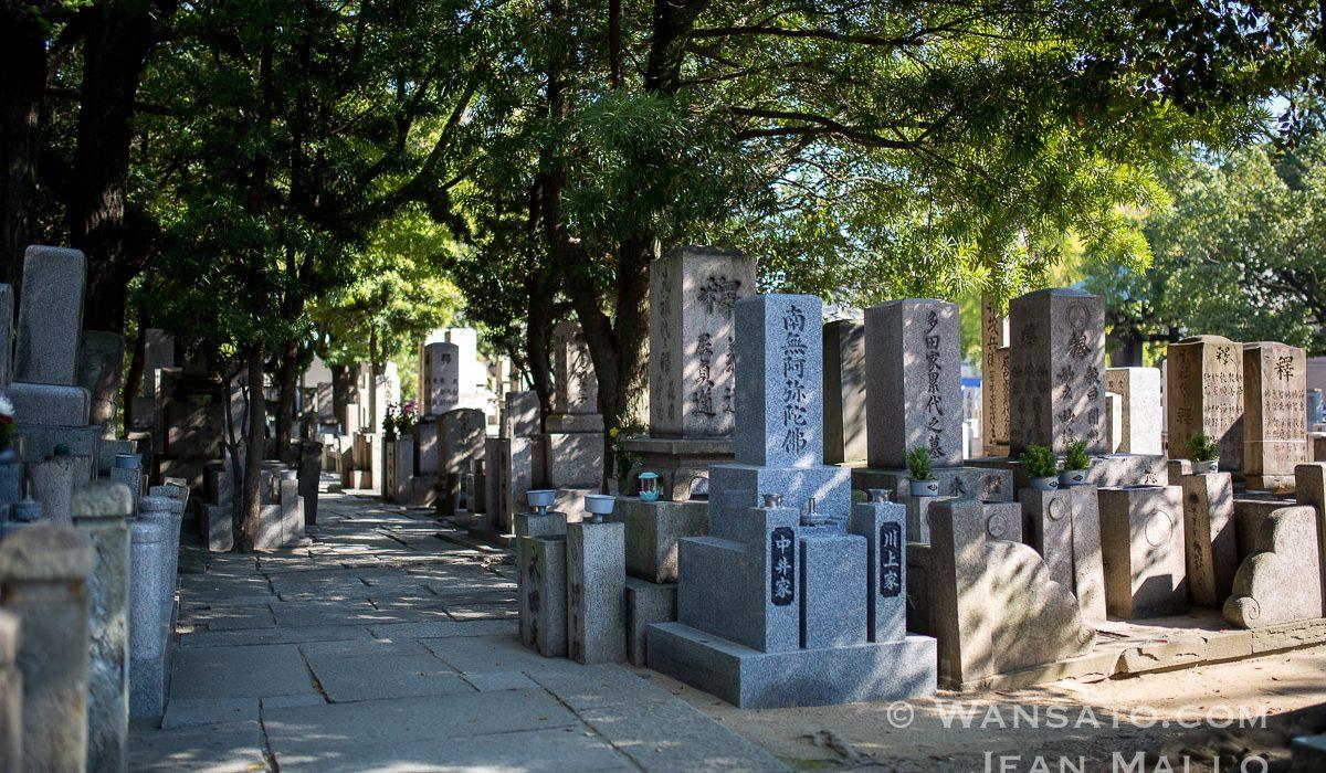 Japon – Osaka Entre Deux Shinkansen