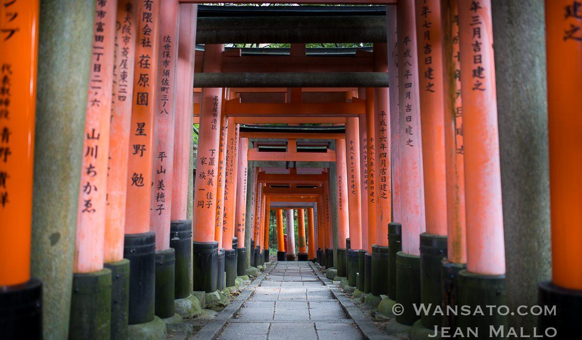 Portfolio - Le Sanctuaire Fushimi Inari