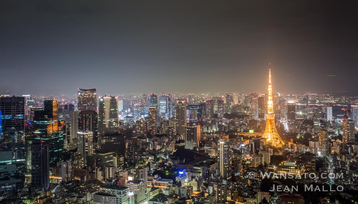 Vue Sur Tokyo II